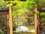 如果想造个小院,一定要看看中式小院的美