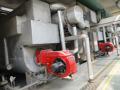 直燃型溴冷(热)水机的特点
