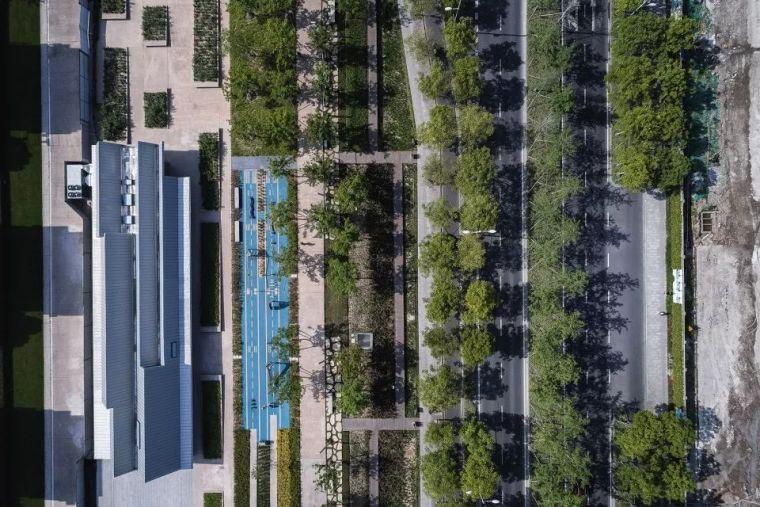 [景观设计]以机场跑道为概念的生态乐园