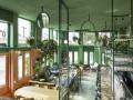 热带风情 绿野雨林   荷兰阿姆斯特丹酒吧设计