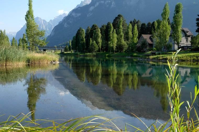 瑞士LowerFactoryPond水系环境修复-14