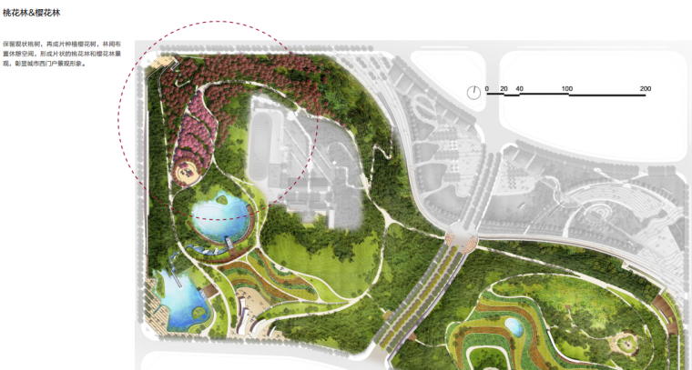 [安徽]含山县山体高差森林公园修建性详细规划设计C-2桃花林&樱花林