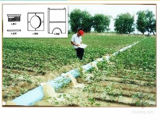 """""""规模化节水灌溉增效示范项目""""县级总体实施方案编制技术探讨"""