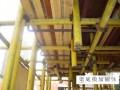 建筑工程安全文明施工标准做法图册(钢筋 模板 混凝土三大工程)
