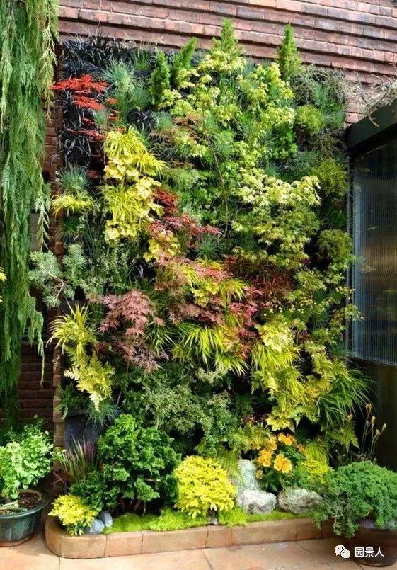 垂直绿化·会呼吸的墙壁_33