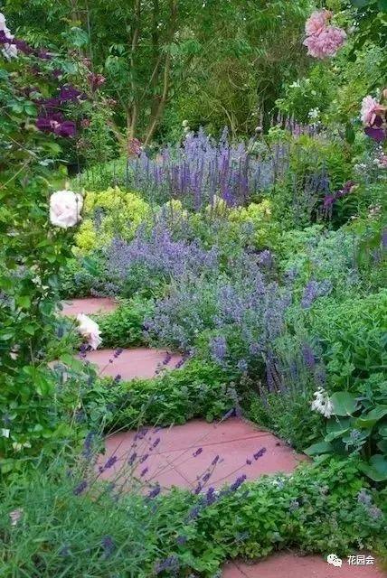 花草与石板的关系•花园小径_17