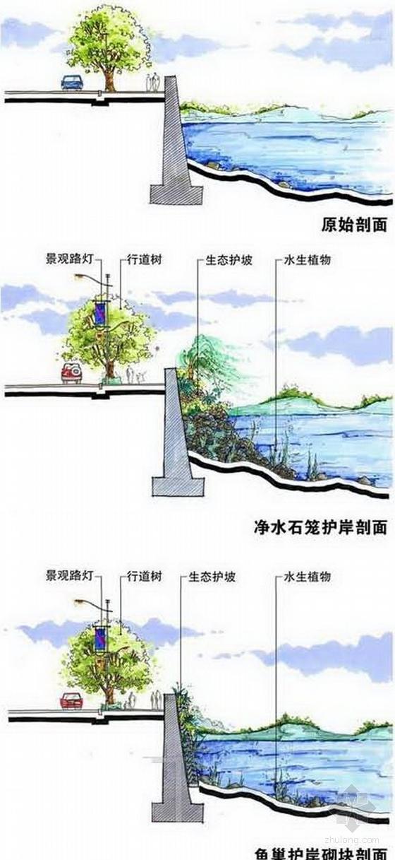 [山东]低碳生态活力城市景观规划设计方案-设计详图