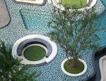 树池 · 水