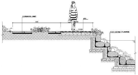 河岸剖面做法2