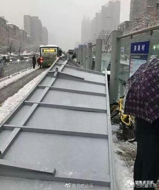 一场大雪引发低价中标血案!_2