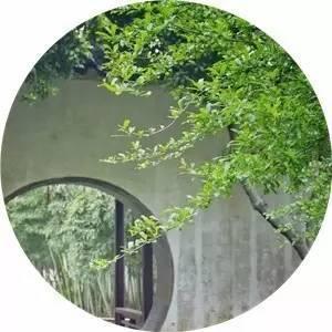 古典园林|从蓬莱到桃花源的国人之梦