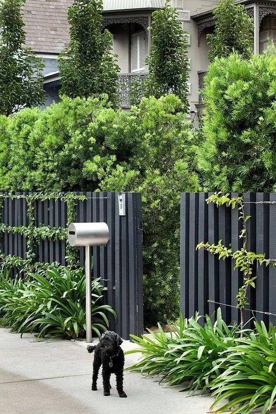用心设计过的围墙,能让你家小院瞬间与众不同!_20