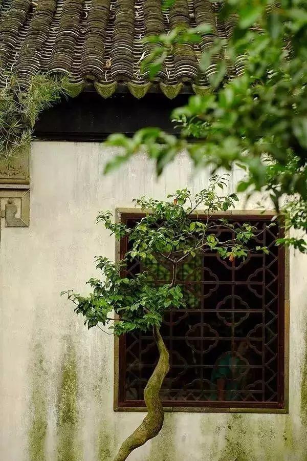 框景·只有中国人才懂的诗情画意_11