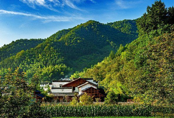 历史建筑保护利用试点项目系列二十一:白果村里仁5556号民居建