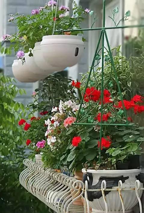 想要这样一个阳台,过小日子,看花开_8