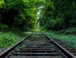 园林风格与景观造价分析及建议