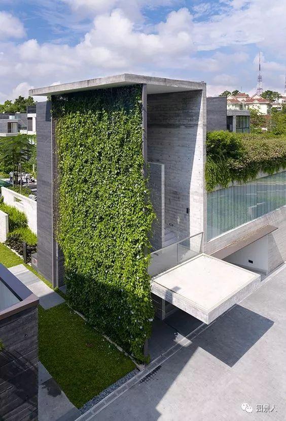 垂直绿化·会呼吸的墙壁_38
