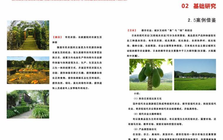 [四川]某现代农业产业园区概念规划设计PDF(78页)