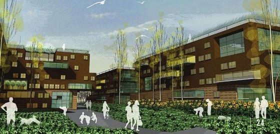 [美国]河滨城市修复景观设计方案-景观效果图