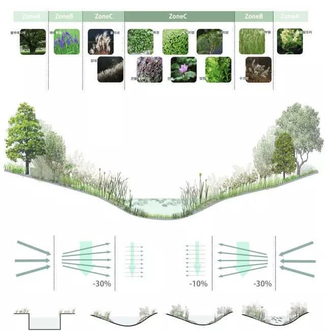 干货:河道景观植物的选择和应用