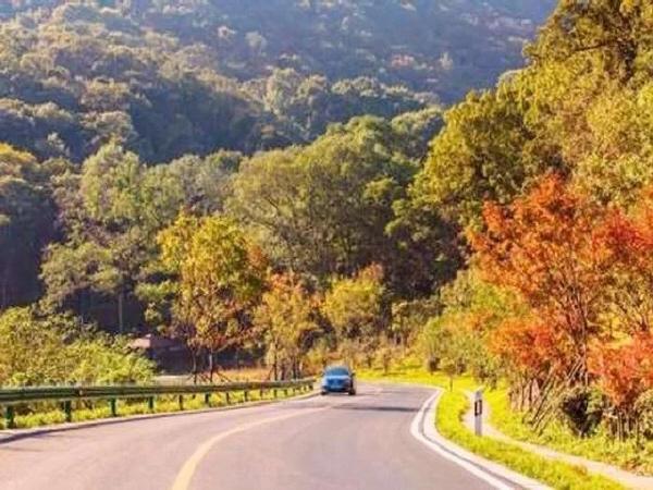 公路生态系统, 同时减轻噪音污染和生产可再生能源