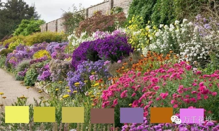 教你如何进行花境中的色彩配置-006.jpg