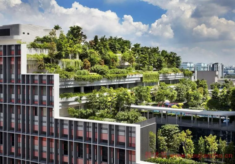 案例|新加坡最值得一看的20个经典建筑与景观
