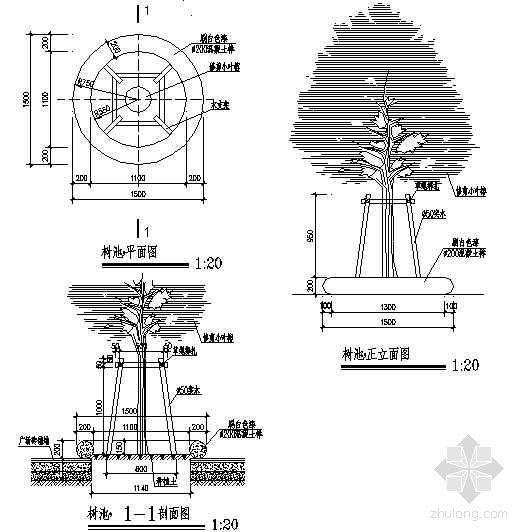 圆形混凝土树池详图