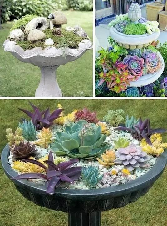 21种方法种花,比在花盆里美十倍!_1