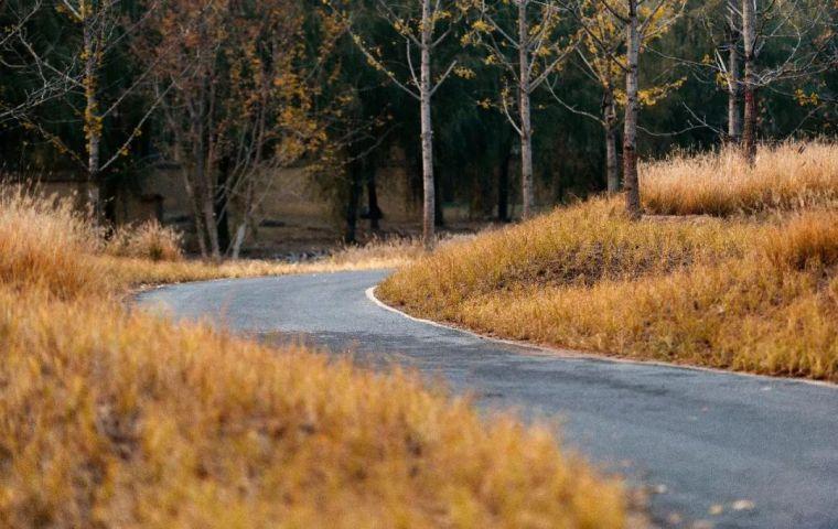 案例 示范区景观规划设计_190