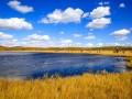 人工湿地水质净化工程土建施工监理投标书