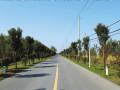 農村公路改造工程可行性研究報告