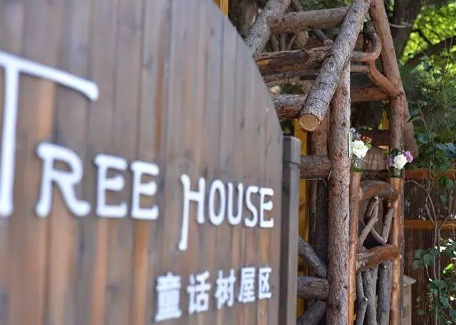 这些树屋,满足你对森林的所有幻想_20
