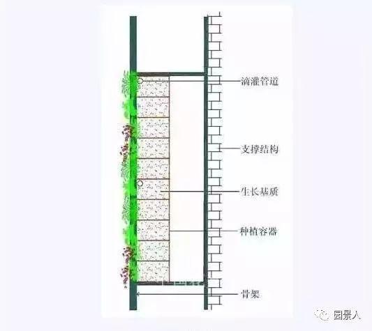 垂直绿化·会呼吸的墙壁_17