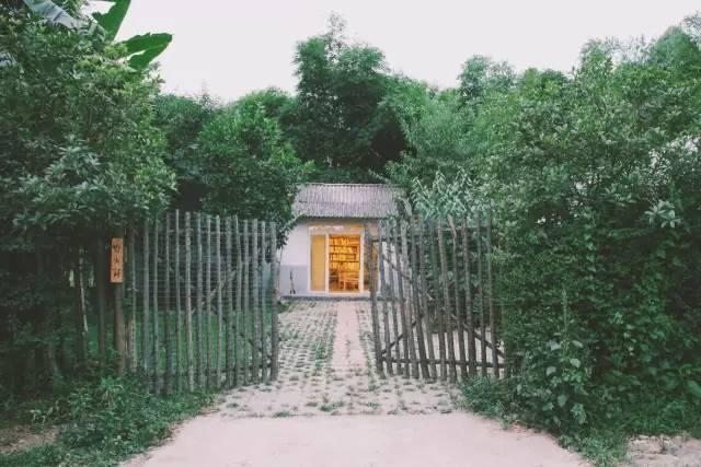 3个人、4个月、9000块,徒手改造一个荒废的老院子