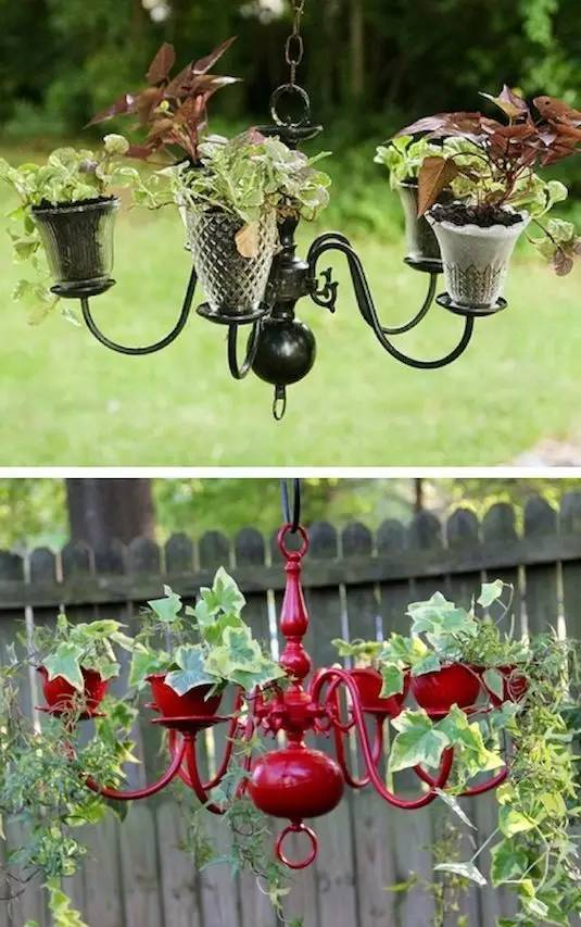 21种方法种花,比在花盆里美十倍!_2