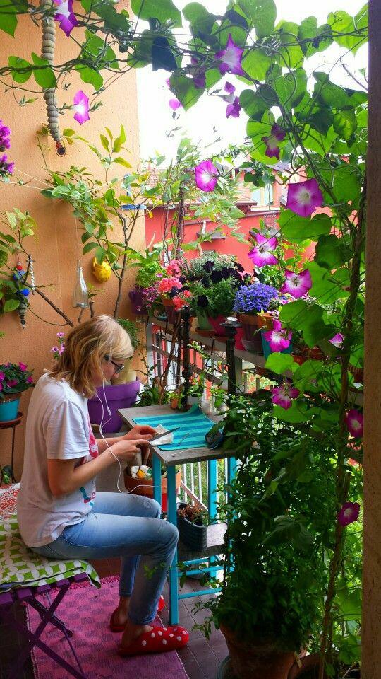 如何用植物装点你的园林景观!_9