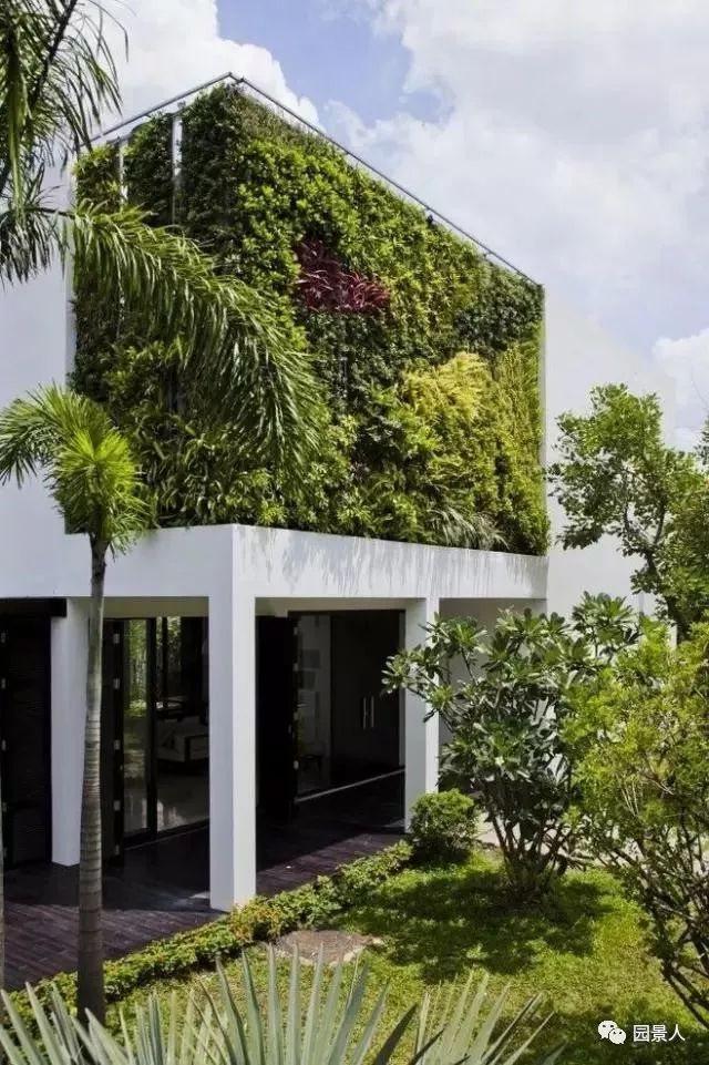 垂直绿化·会呼吸的墙壁_3