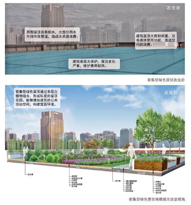 24种海绵城市设计措施全图解!_13