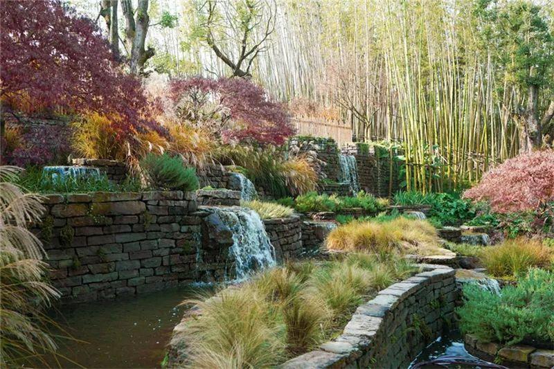 植物造景·实用景观设计来一波_21