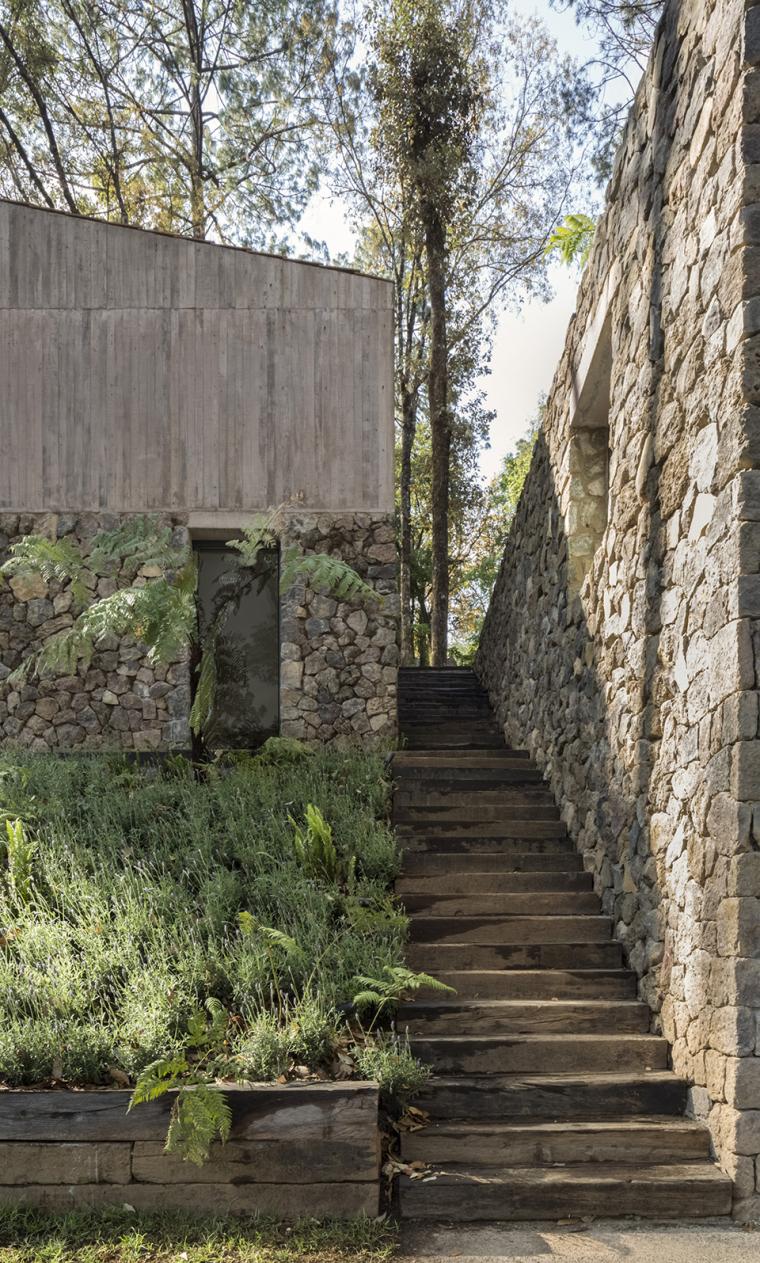 墨西哥浸润在绿意中的L型体量住宅外部实景图 (6)