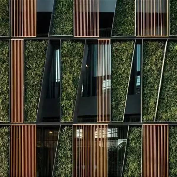 绿植才是墙壁最美的肌理