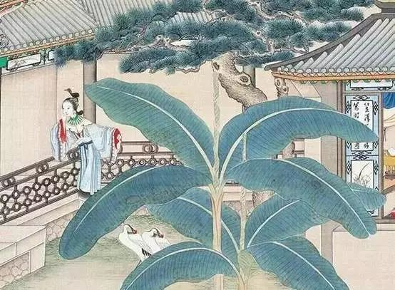 宋词里的庭院,古人的生活美学_13