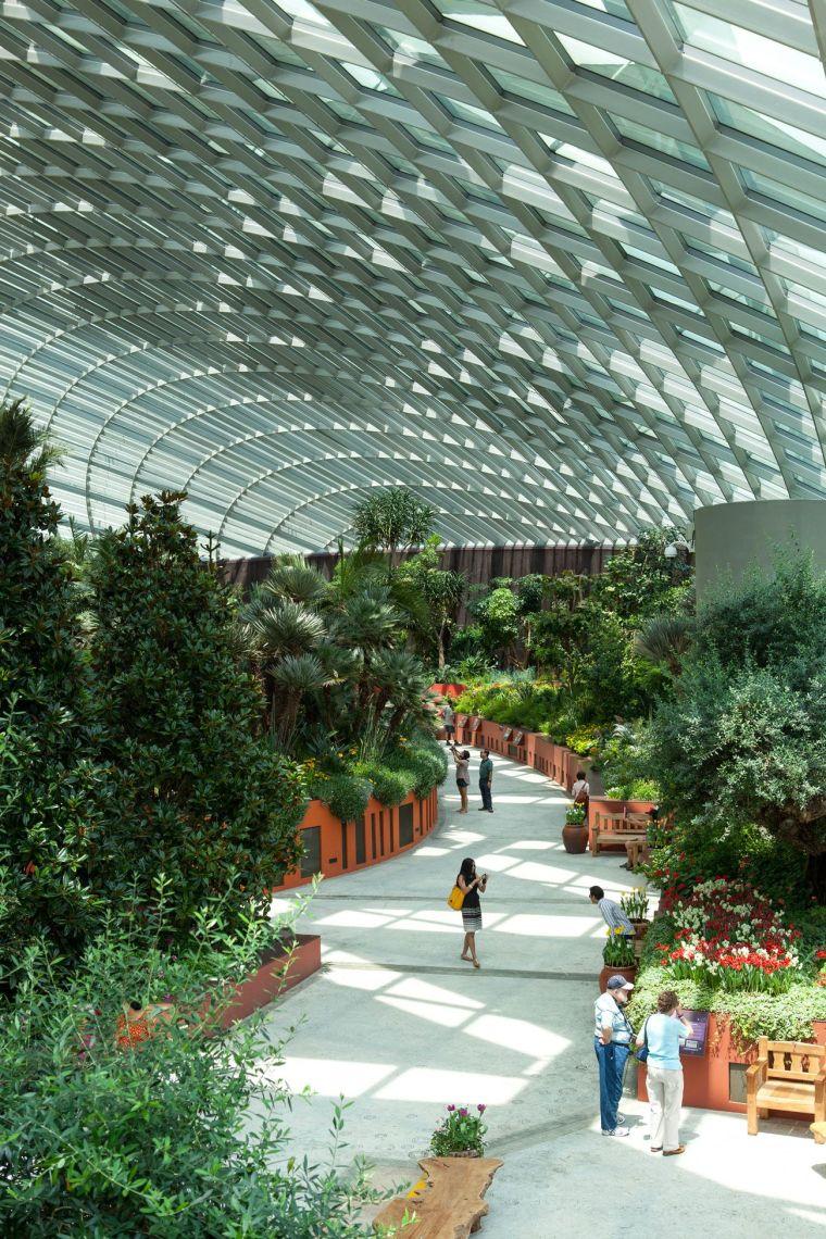 新加坡世界级超级温室花园-11