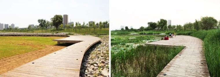 案例 渭柳湿地公园_15