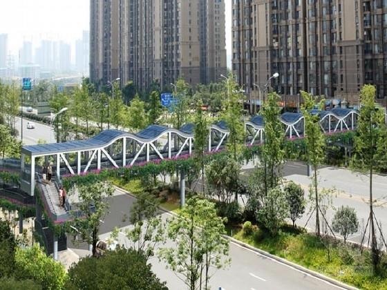 [湖南]含花盆支架25.5m+32.7m+25.5m下承式钢桁架连续梁人行天桥施工图56张