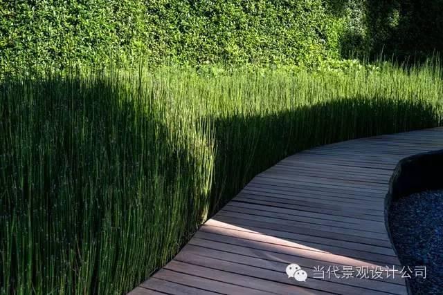 泰国清迈思绪公园景观设计_6