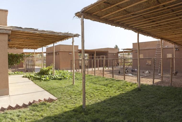 伊拉克动物辅助疗养中心-6
