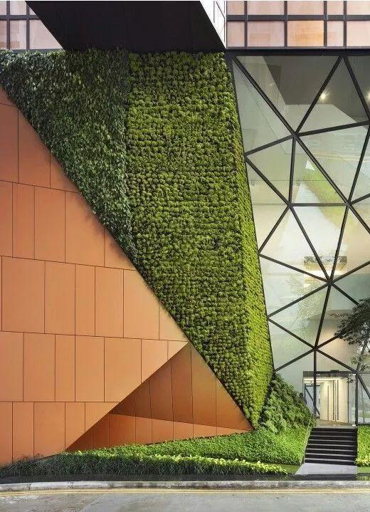 垂直绿化 · 让混凝土变森林
