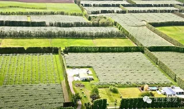 农业景观的意义_73